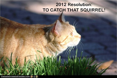 2012 Resolution: