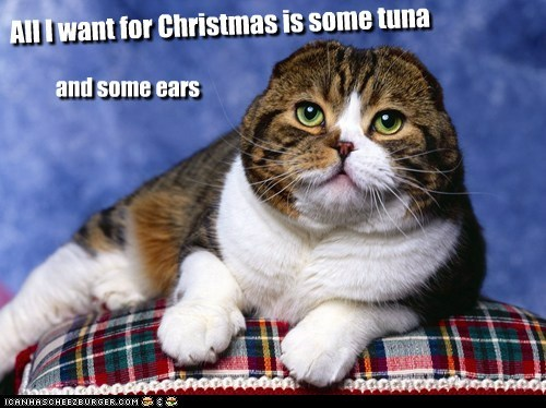 All I want for Christmas is some tuna and some ears