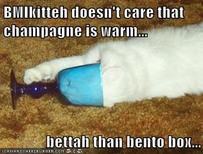 BMIkitteh doesn't care that champagne is warm...  bettah than bento box...