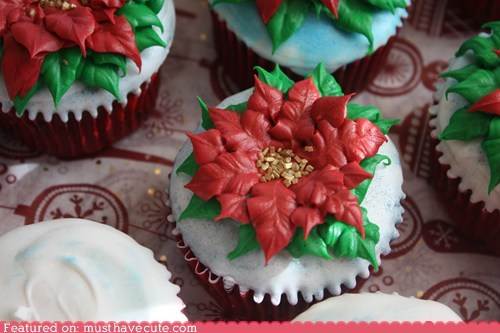 cupcakes,epicute,flowers,frosting,poinsettia