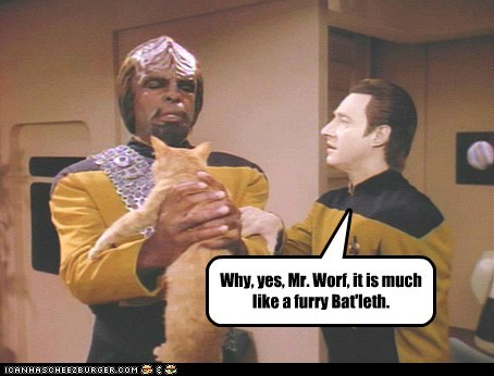 Yes, Mr. Worf
