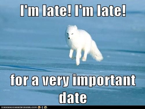 I'm late! I'm late!  for a very important date