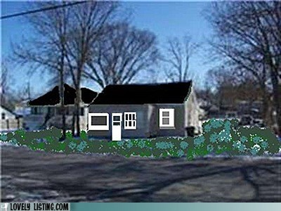 ms paint,photoshop,yard