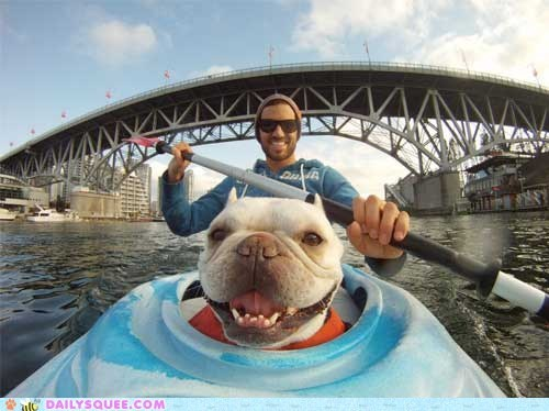 acting like animals,dogs,french bulldogs,fulfilled,happy,kayaking,new years resolution,smile,smiling