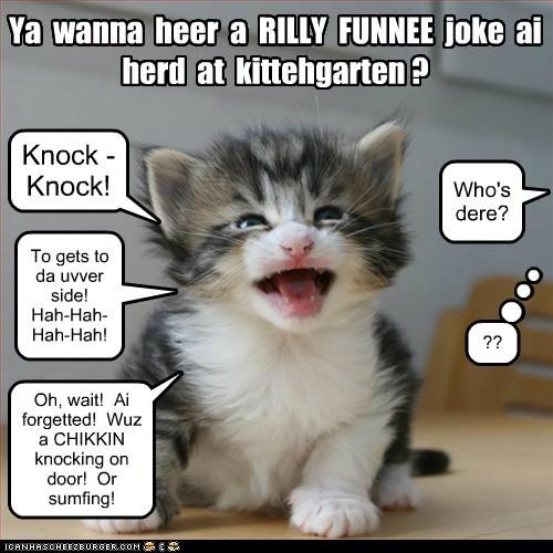Ya  wanna  heer  a  RILLY  FUNNEE  joke  ai  herd  at  kittehgarten ?