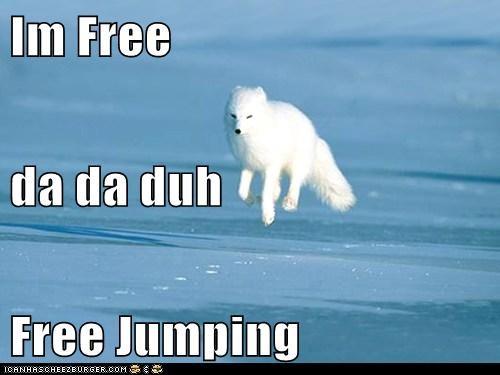 Im Free da da duh Free Jumping