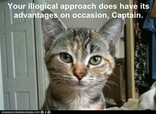 Your illogical approach does have its advantages on occasion, Captain.
