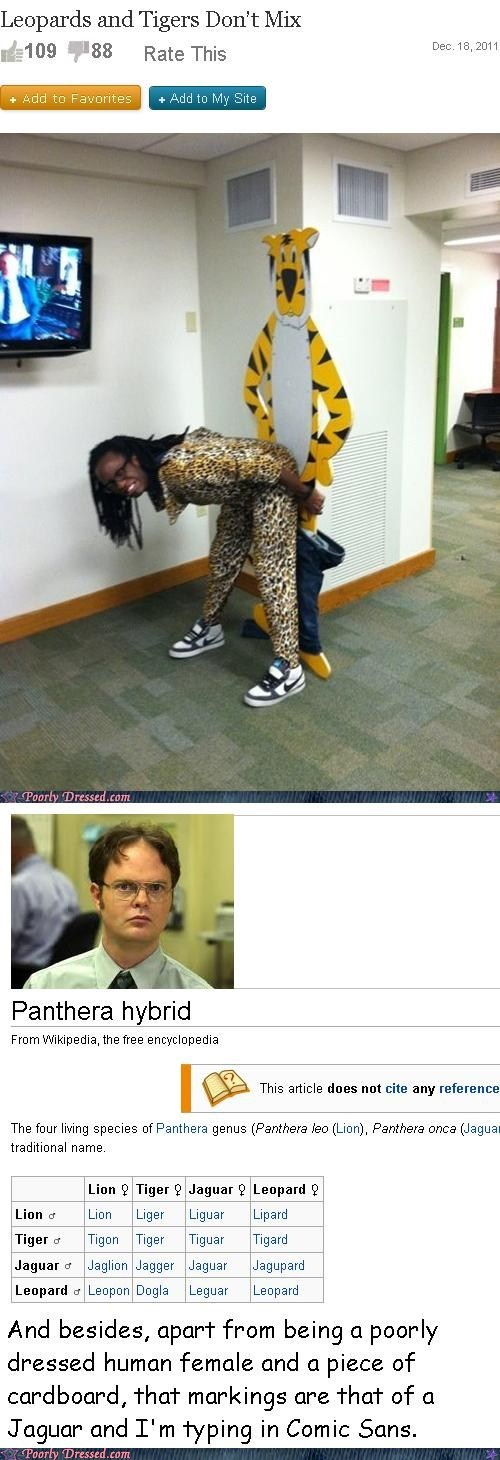 Dwight Schrute has something to say on this matter