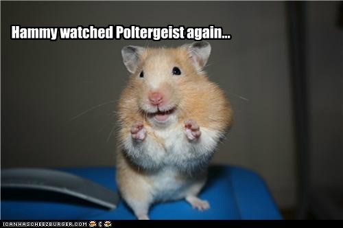 Hammy watched Poltergeist again...