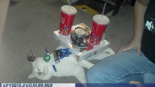 Crunk Critters: Don't Be First To Cat-Nap At The Party