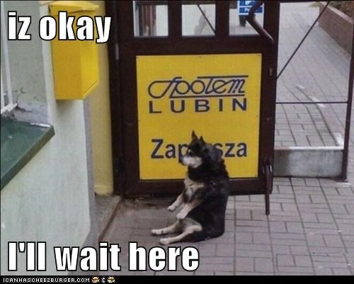 iz okay  I'll wait here
