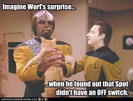 brent spiner,Cats,data,Michael Dorn,spot,Star Trek,surprise,switch,Worf