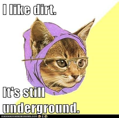 I like dirt.  It's still underground.