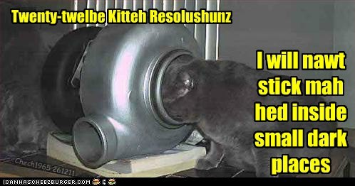 Twenty-twelbe Kitteh Resolushunz