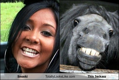 Snooki Totally Looks Like This Jackass