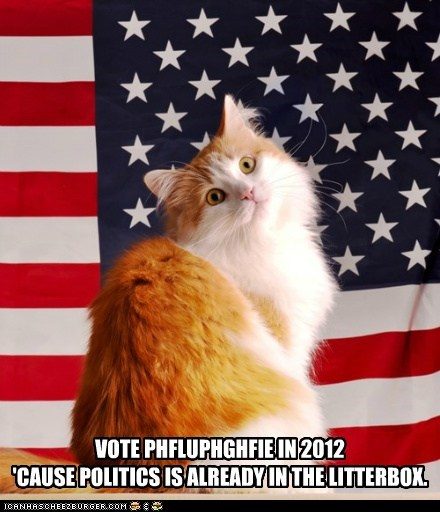 Paid for by teh Itteh Bittehs For Fluffy in Congress 2012 Committeh
