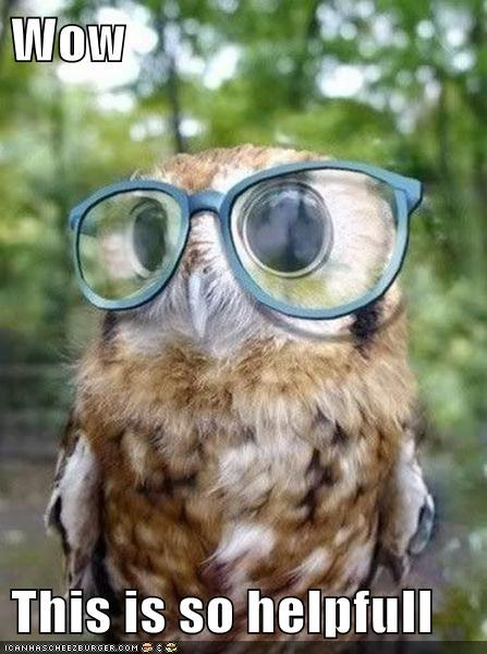 This Little Owl Had Astigmatism