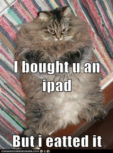 I bought u an ipad But i eatted it