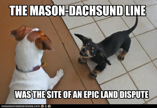 argument,best of the week,dachshund,disagreement,dispute,Hall of Fame,jack russell terrier,land,land dispute,mason dixon line,no