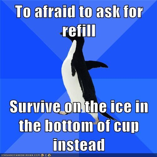Socially Awkward Penguin Tries Not to Chew Ice