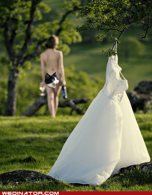 alcohol,funny wedding photos,Hall of Fame,naked,wedding dress