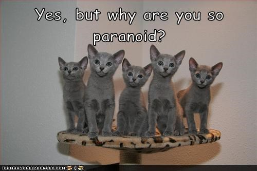 Yes, but why are you so paranoid?