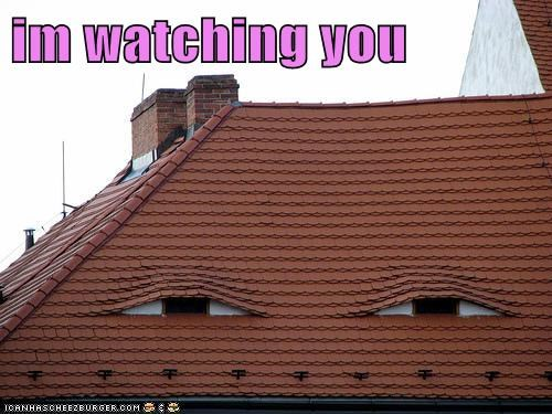 im watching you