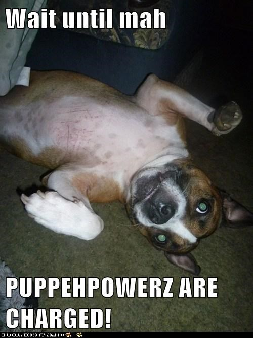 Wait until mah  PUPPEHPOWERZ ARE CHARGED!