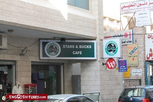 bucks,cafe,coffee,Hall of Fame,middle east,Starbucks,stars