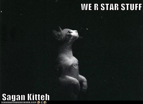 WE R STAR STUFF  Sagan Kitteh