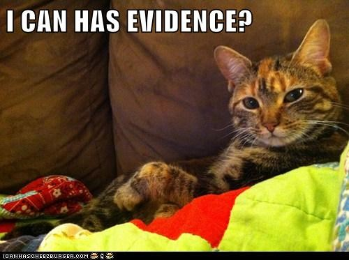 I CAN HAS EVIDENCE?