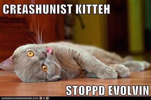 CREASHUNIST KITTEH   STOPPD EVOLVIN