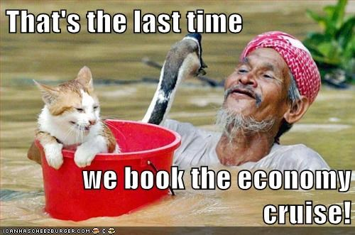 animals,assistance,cat,cruise,goose,helping,human