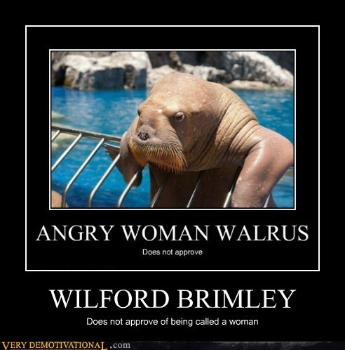 hilarious,walrus,wilfrord brimley,woman