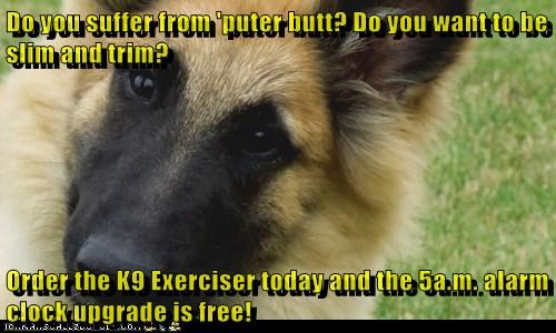 Do you suffer from 'puter butt? Do you want to be slim and trim?  Order the K9 Exerciser today and the 5a.m. alarm clock upgrade is free!