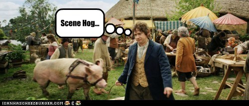 Scene Hog...