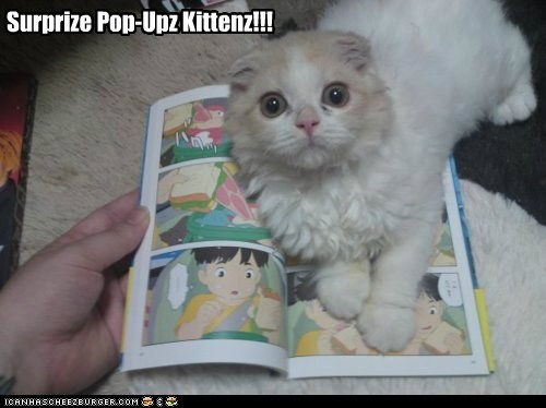 Pop-up Kitten
