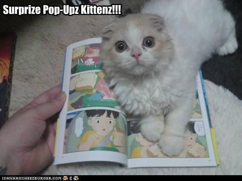 Pop-up Kitten