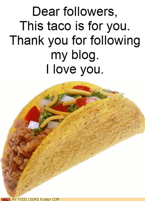 blog,followers,gift,love,taco
