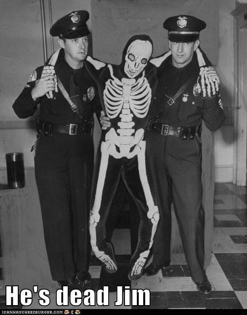 cops,funny,Photo,police