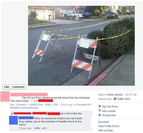 christmas,crime scene,image,tree,win,witty