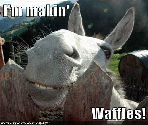 caption,captioned,donkey,making,quote,shrek,waffles