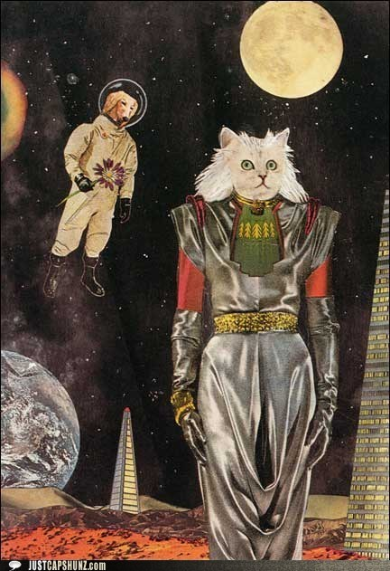 caption contest,cat,dogs,idgi,intergalactic,mixed media,outer space,whats-going-on-here,whoa,wtf