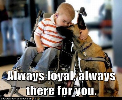 Always loyal, always there for you.