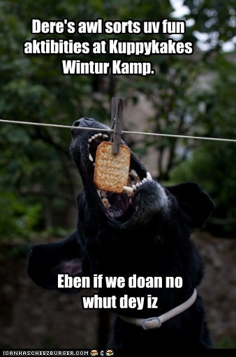 Kamp Kuppykakes Winter.
