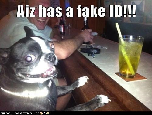alcohol,awesome,bar,booze,boston terriers,drink,drinking,fake id,happy,id,party time,smiling