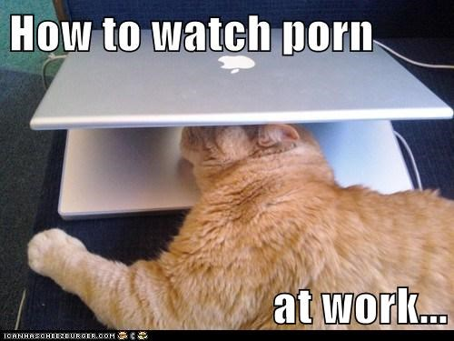 How to watch porn  at work...