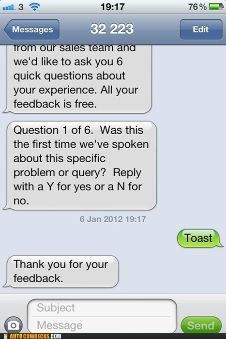 feedback,question,sales,toast,yeah toast,yes or no