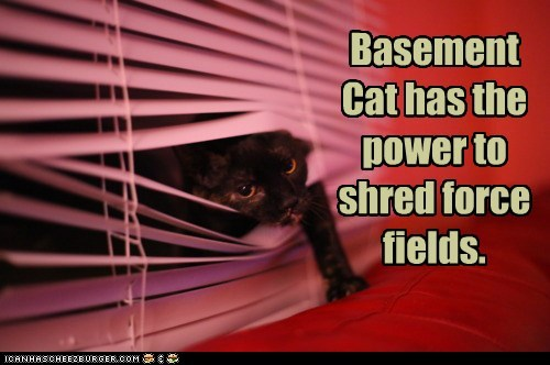 Basement Cat has the power to shred force fields.