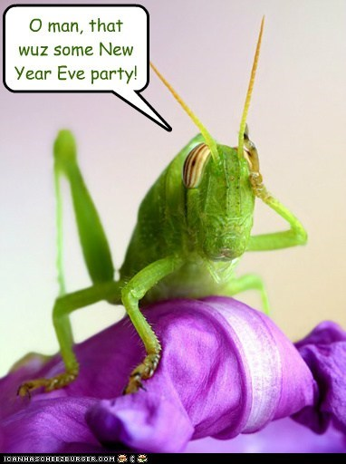 O man, that wuz some New Year Eve party!